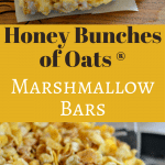 These Honey Bunches of Oats Marshmallow Bars are delicious and easy to make. They are perfect to eat while watching a movie at home or at the movies!
