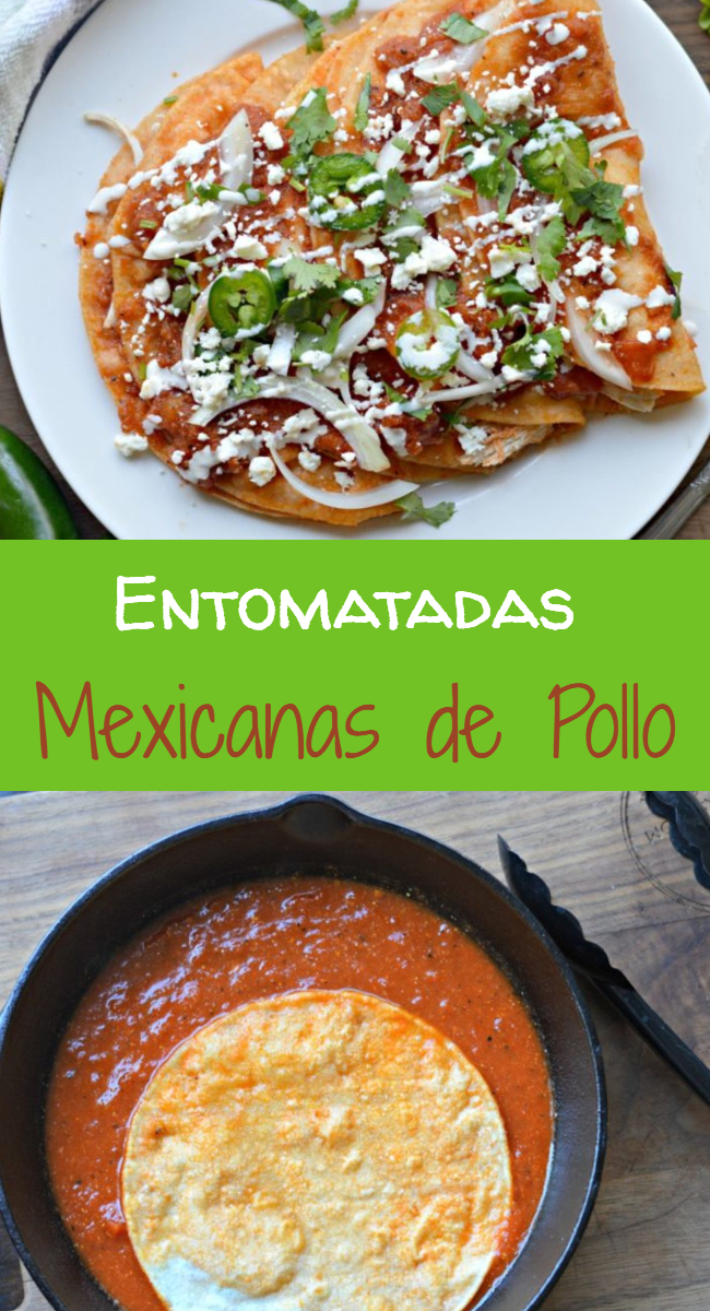 Entomatadas Mexicanas De Pollo My Latina Table