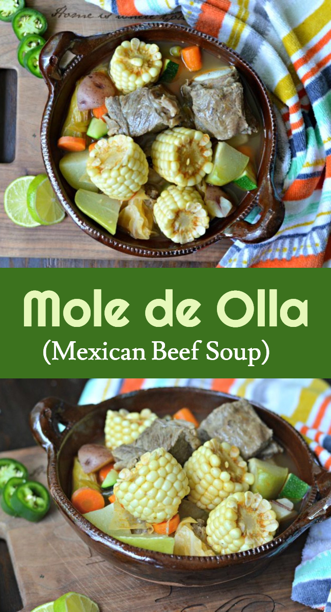 "Learn exactly how to make this delicious Mexican beef based soup, commonly referred to as ""mole de olla."" This is a traditional meal from the south and central regions of Mexico and you are sure to love it!"