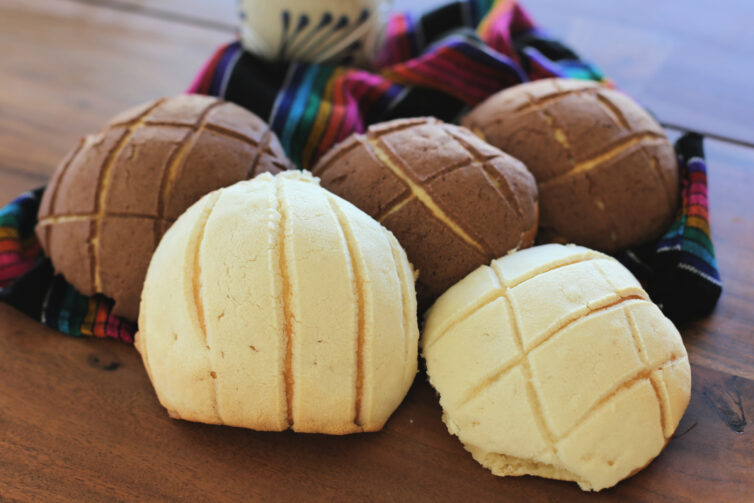 Conchas close up